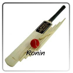 kashmir willow cricket sets