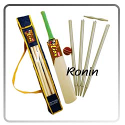 english willow cricket sets