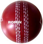 pu cricket balls